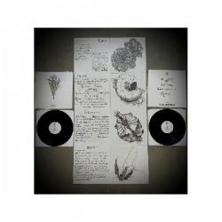 Spire - Metamorph, LP