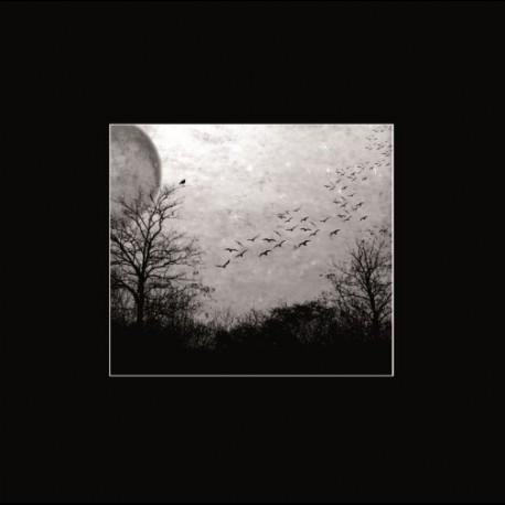 Deathgate Arkanum - Seelen, LP
