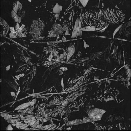 Turia - Dede Kondre, LP