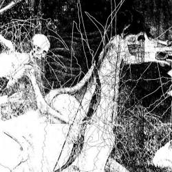 Ravencult - Temples Of Torment, LP