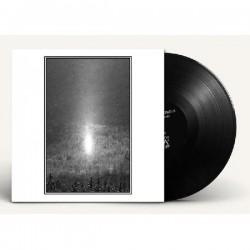 Cantique Lepreux - Cendres Célestes, LP