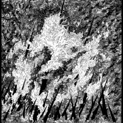 Vilkacis / Turia - Split, LP