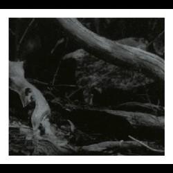 Barren Canyon - World of Wounds, Digi CD