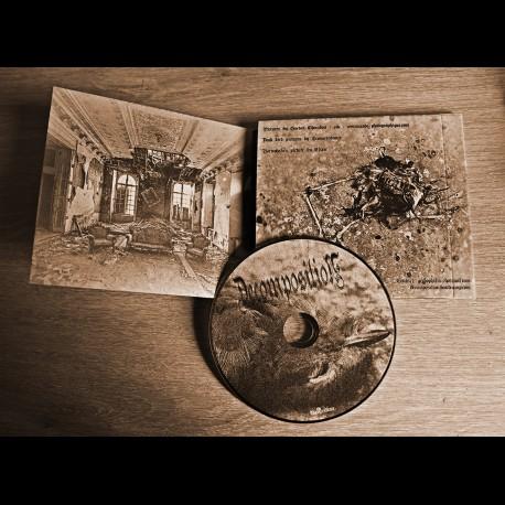 Decomposition - s/t, Digi CD