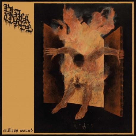 Black Curse - Endless Wound, LP