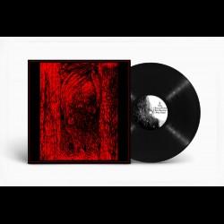 Psychotomimetic - Delirio Dimensional, LP