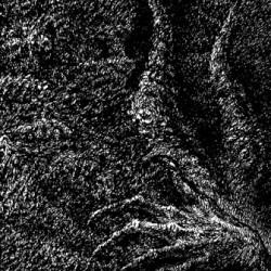 Flagellant - Morbus Nefastus, CD