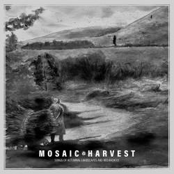 Mosaic - Harvest, CD (Slipcase)