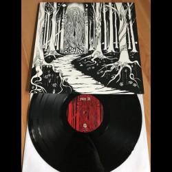 Siculicidium - Land Beyond The Forest, LP