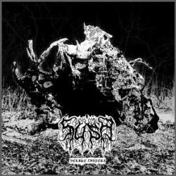 Suša - Velike zvijeri, LP