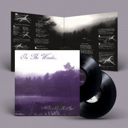 In the Woods... - HEart Of The Ages, DLP (black)