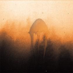 Semilanceata - Dødhelighaz, Digi CD