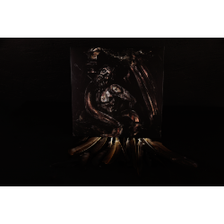 Predatory Light / Vorde - Split, LP